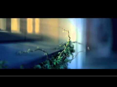 Husqvarna – Taming the wild